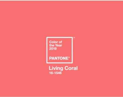 """Color del año 2019 """"Pantone Living Coral"""""""